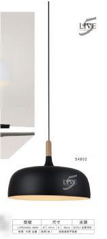 SW54802